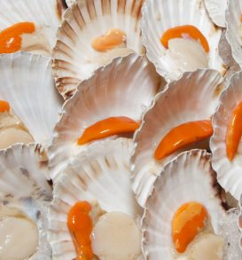 26519038 - fresh scallops and fish fillets on sunny mediterranean market stall